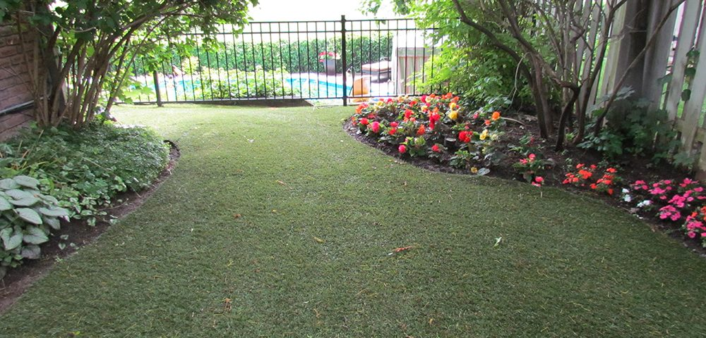 garden and artficial grass lawn with pool
