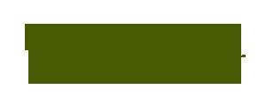 Design-Turf-logo-green-on-transparent