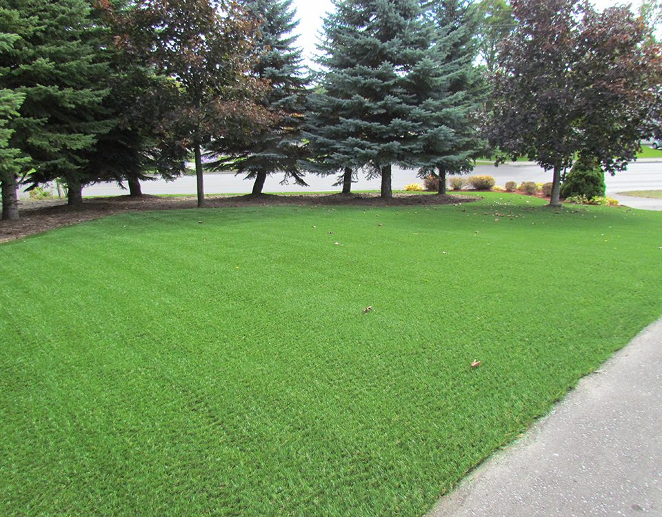 lawn made of plastic grass in ontario