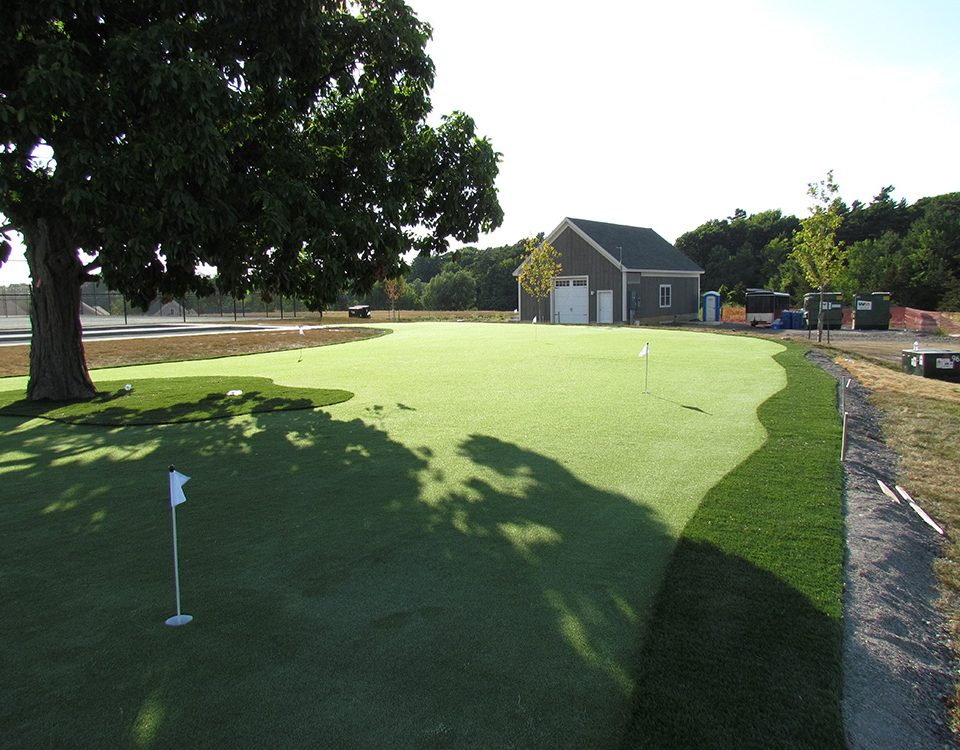 beautiful artificial golf turf