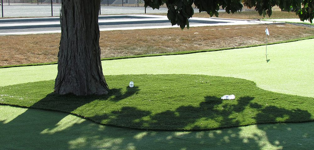putting green with fake grass in whitby ontario