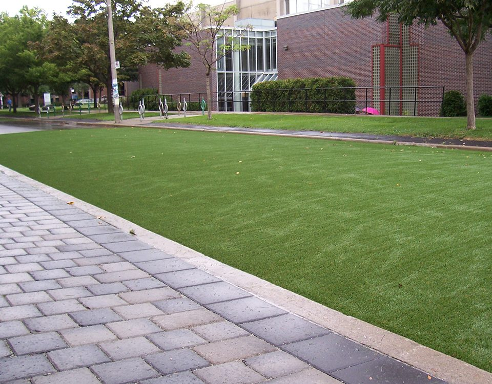 commercial artificial grass lawn toronto
