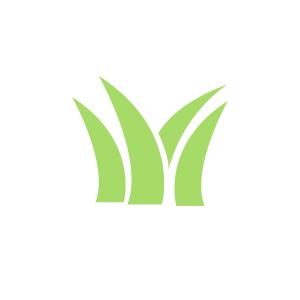 landscape-grass-icon