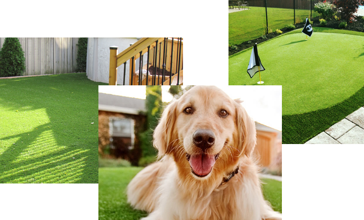 artificial-grass-examples