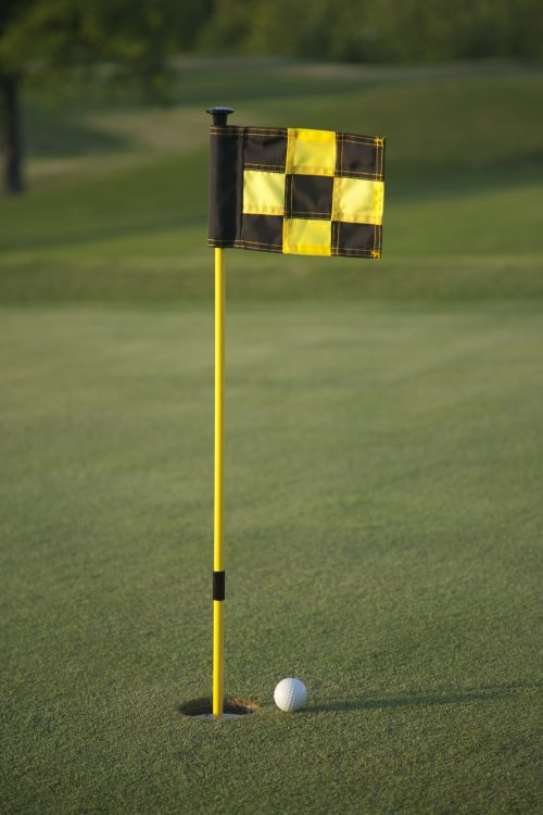push-n-putt-liftnputt-flagstick