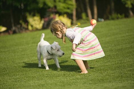 Artificial PET TURF with girl and dog