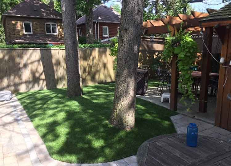 Artificial grass installations for Toronto homes