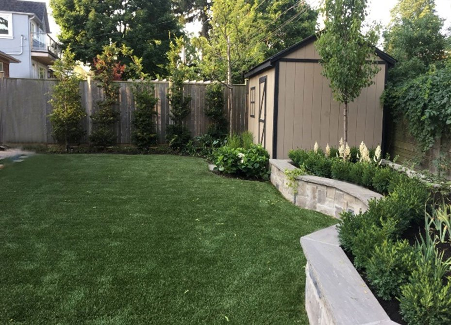 landscape-grass-on-backyard