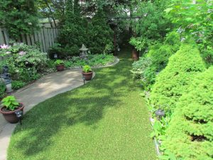 Nicely shaped backyard filled with gardens and flora