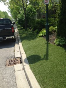 Grass medians along roadsides
