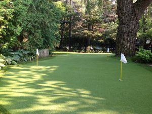 Impeccably designed and installed 5 hole green for our Toronto Client