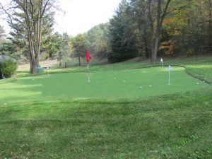5 hole golf green in Stouffville On