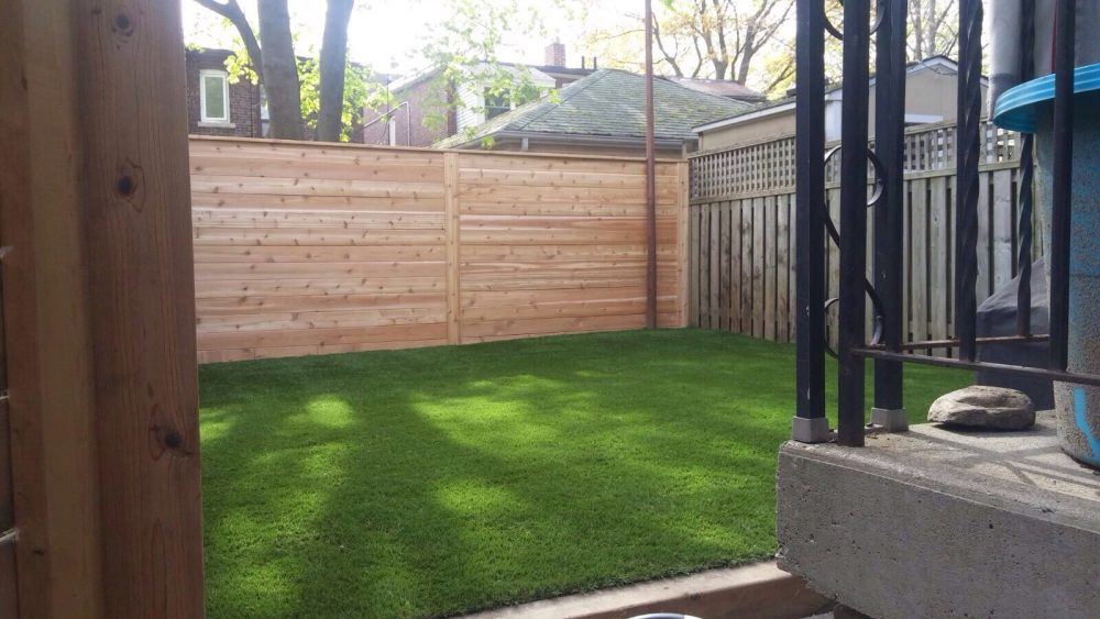 New fencing with grass looks clean and natural