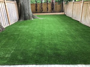 Large trees& new fences are finished with artificial grass