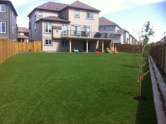 Plush grass beautiful landscape makes this Toronto backyard to be desired