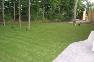 Trees galore are problematic for real grass but not for artificial grass
