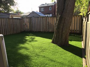 Big Trees thrive with our fast draining turf backings