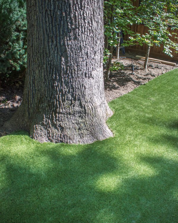 How to install artificial grass around a large tree