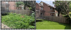 BEST BEFORE & AFTER BAckyard