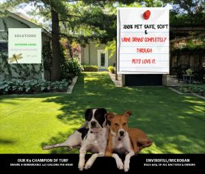 100% Pet Safe 2 dogs