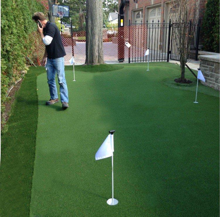 Side yard 4 hole golf green