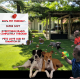 Kids , dogs and bubbles on K9 Champion grass