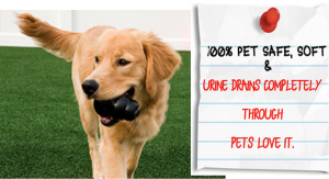 100% PET SAFE & They Love it