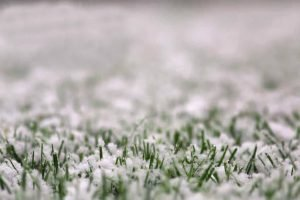 snow of artificial grass