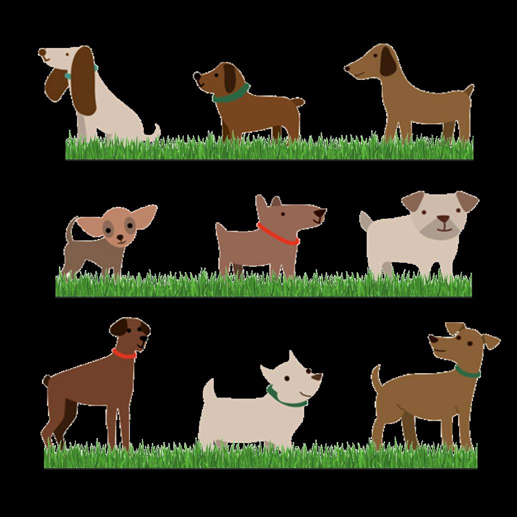 DOGS ETC