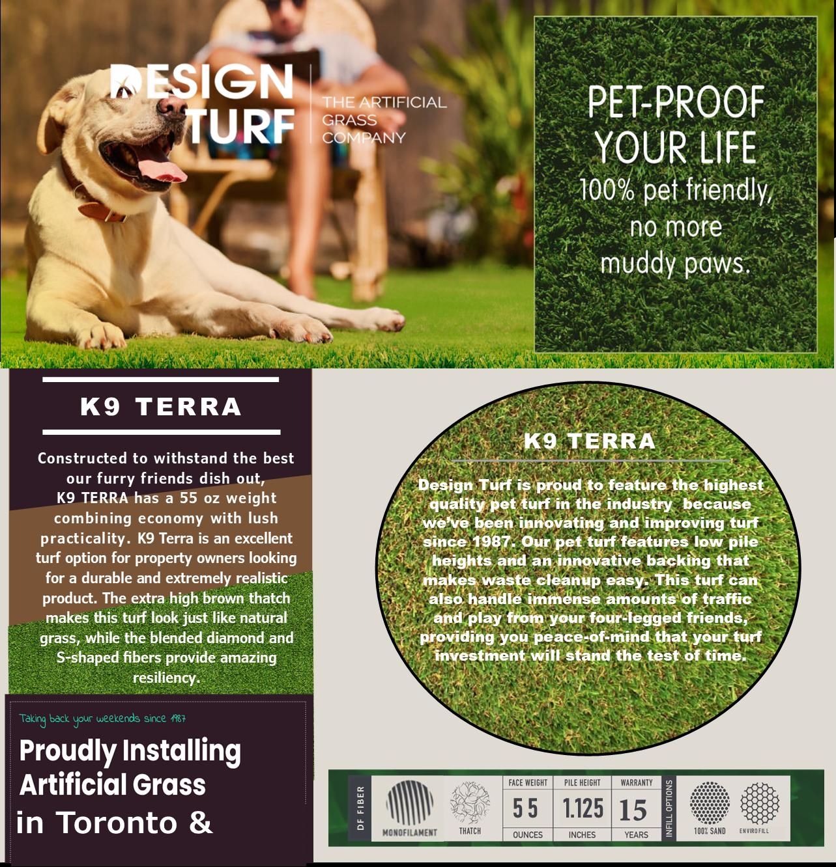 DT Terra website image 2021