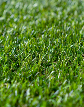 Lead-free artificial turf for Toronto & the GTA